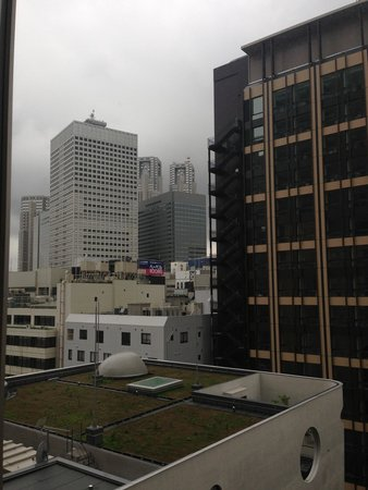 Hotel Sunroute Plaza Shinjuku : レディースルームからの眺めです