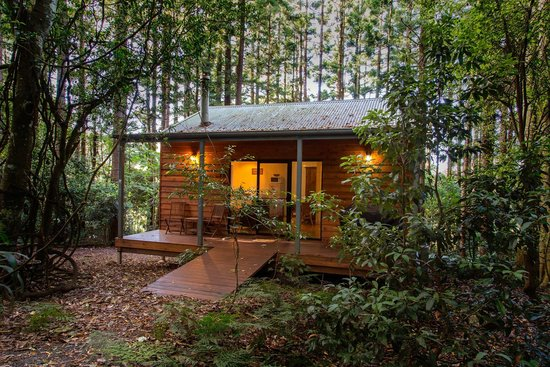 Bunya Mountains, Australia: Whitewood Cottage