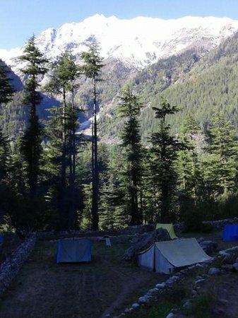 Kinner Camp Sangla: Kinner camp