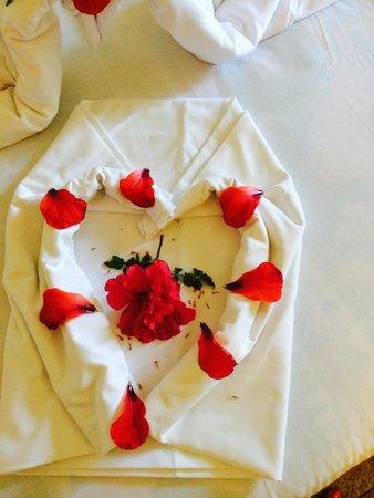 El Mouradi Club Kantaoui : love