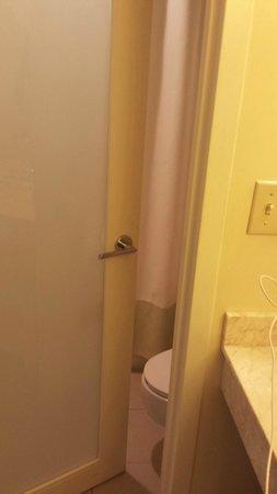 Hyatt Regency Sarasota: Really small tub/toilet/shower area door is close to toilet