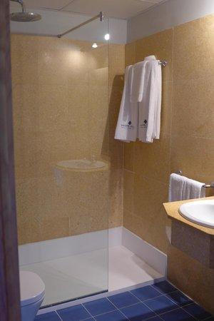 Hotel Santa Maria de Alquezar: Bathroom of standard room