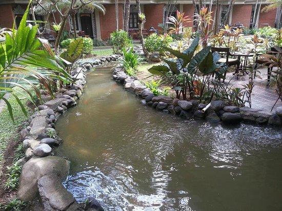 Adi Dharma Hotel : Fish pond