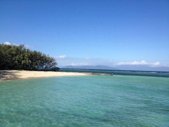 Big Cat Green Island Reef Cruises - Day Tour: Green island