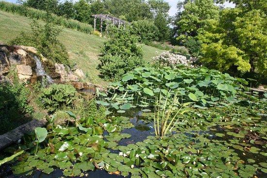 Les Jardins d'Eau : Jardin d'Eau 6
