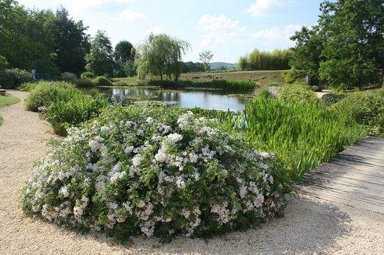 Les Jardins d'Eau : Jardin d'Eau 7