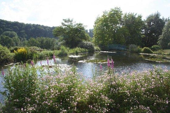 Les Jardins d'Eau : Jardin d'Eau 5