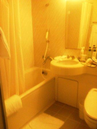 Hotel Royal Stay Sapporo : バスルーム