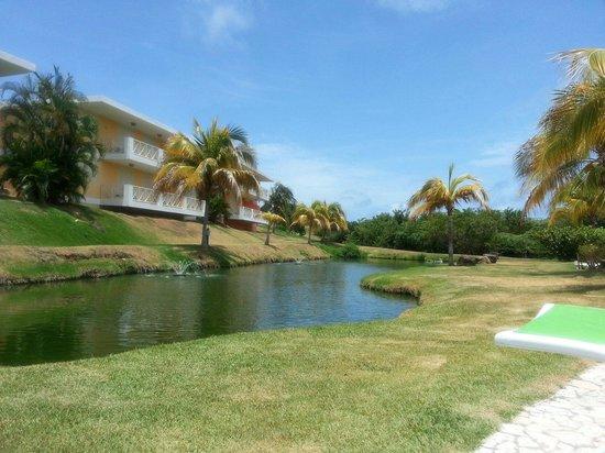 Sea Breeze Hotel: Pequeño estanque,