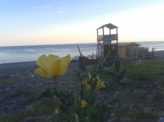 Spiaggia di Palombaia: 200 gradini .... Ma poi un vero paradiso