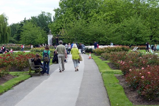 A visit to queen mary rose garden at regents park picture of queen marys gardens a visit to queen mary rose garden at regents park sisterspd