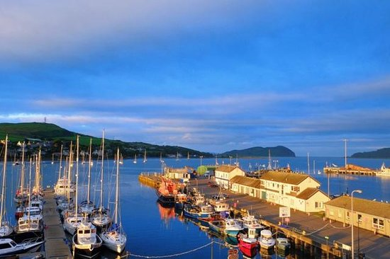 The Royal Hotel : Campbeltown harbour from the hotel