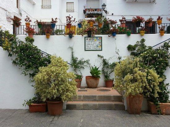 Hotel La Casa: Torrox street pride