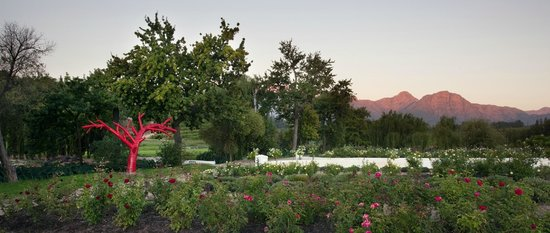 Peter Falke Winery: Magnificent sunsets