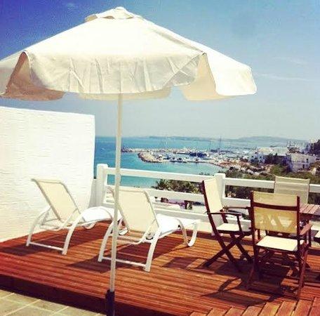 Alexandros Studio Apartments : la nostra terrazza con vista sul porticciolo di Naoussa