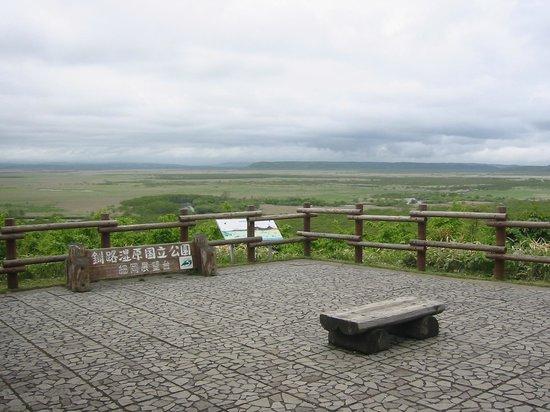 Hosooka Observation: 細岡展望台 大観望1