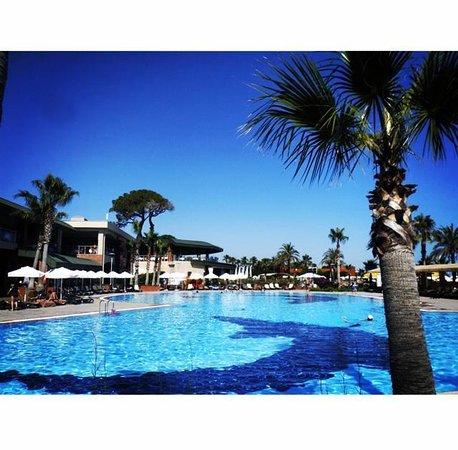 Maritim Pine Beach Resort: Pool