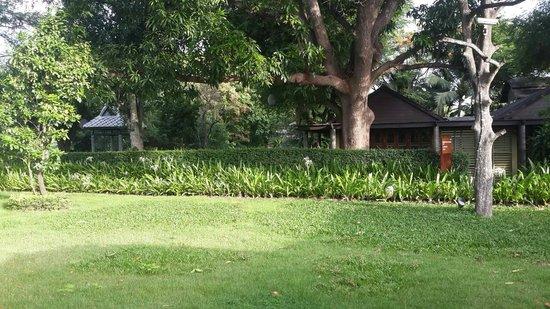 U Inchantree Kanchanaburi: yard