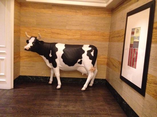 Kimpton Hotel Monaco Denver: love the cow by the elevators!