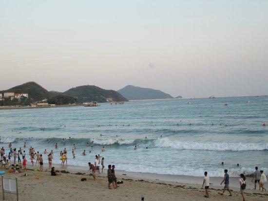 Guesthouse International Hotel: Море, пляж