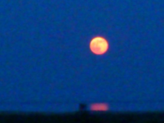 Mas del Mar: Full moon (poor pic shot with a mobile phone!)