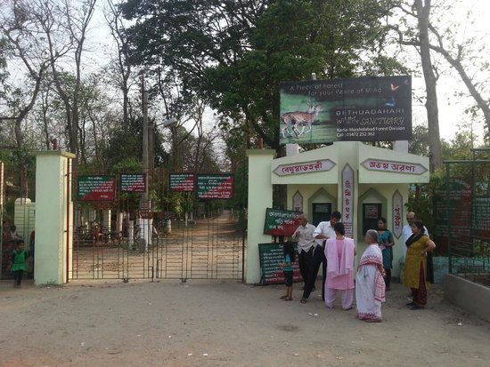 Bethuadahari Wildlife Sanctuary: Deer Park