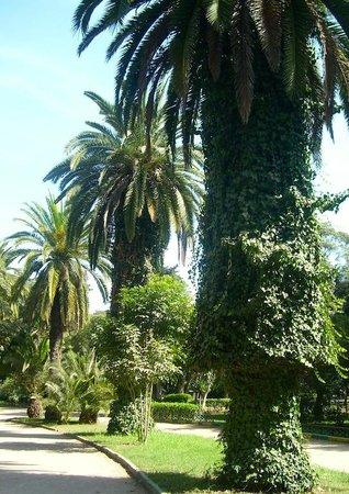 Rabat Old Town : Rabat Ville, Jardines de Nouzhat Hassan (Triangle de Vue)