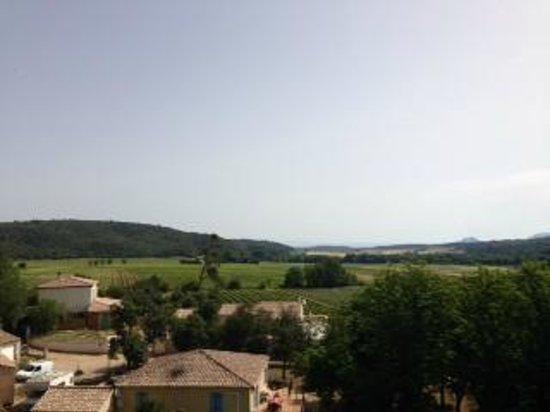 Domaine saint Dominique : Weinberge und Wald