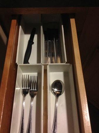 Magnolia Hotel Dallas Downtown: 1 spoon, 2 forks, a lot of knives but not any cooking supplies