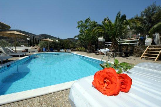 Villa Irini: ΧΩΡΟΣ ΠΙΣΙΝΑΣ