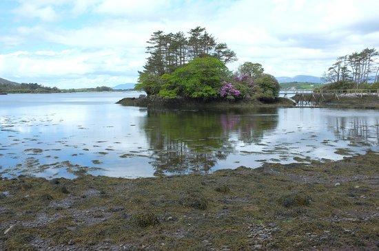 Derreen Gardens: Island at Dereen Gardens
