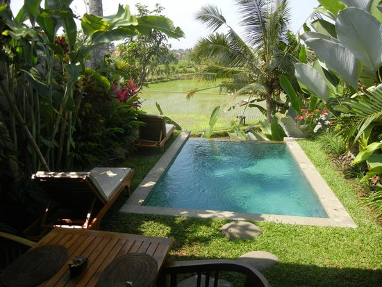 Ubud Padi Villas: View from sliding front bedroom doors