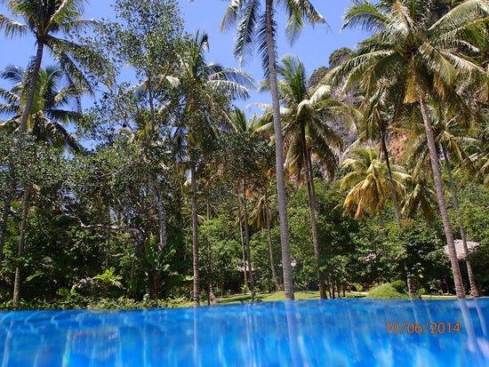 Ban Sainai Resort: Pool view..