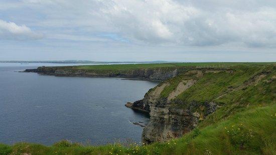 Bromore Cliffs: Juni 2014