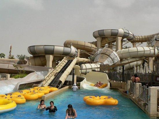 Wild Wadi Water Park : самый полюбившийся экстрим