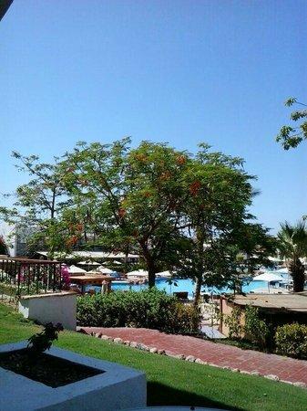 Hilton Sharm Dreams Resort: from room