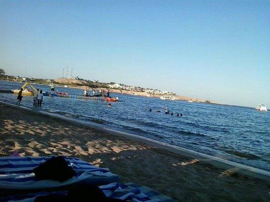 Hilton Sharm Dreams Resort: beach