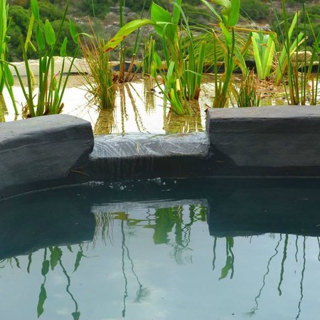 Smadar beClil Cabins: The new ecological pool 1