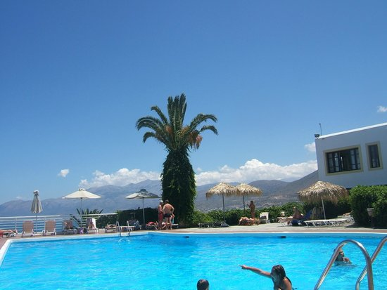 Hersonissos Village Hotel : La piscine et son palmier