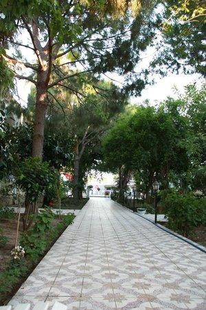 Anil Hotel: тень деревьев позволяет отдыхать в жару