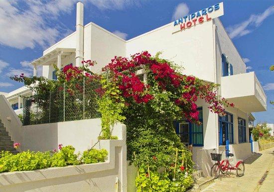 안티파로스 호텔