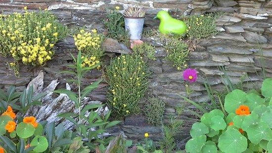 La Belle Verte : Jardin mur de pierre.
