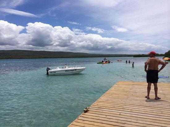 Gilligan's Island : Perfect