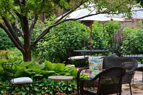 Higher Ground Hotel: Garden