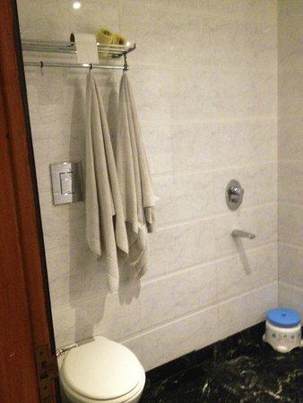 Hotel Krishna: Этими полотенцами мы еще не вытерались)))