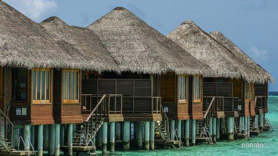 Sheraton Maldives Full Moon Resort & Spa: Water Bungalow