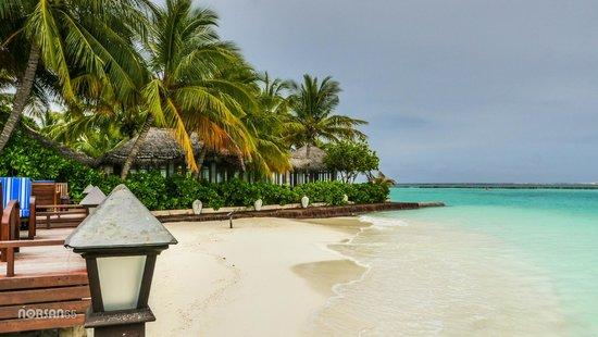 Sheraton Maldives Full Moon Resort & Spa: The Lagoon