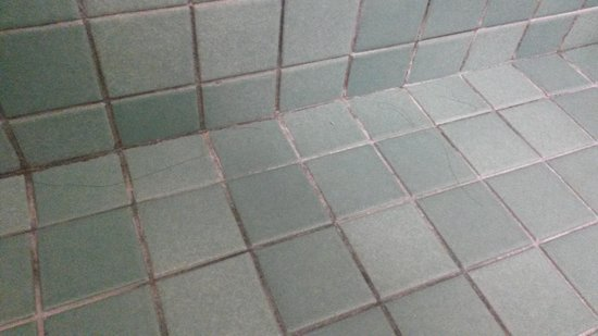 Royal Continental Hotel: Bathroom floor with hair of previous guest