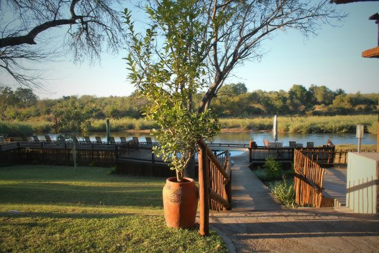Sabie River Bush Lodge: vista sul fiume