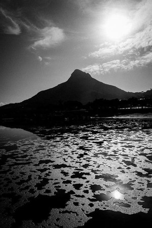 Photography Tours: Lion's Head